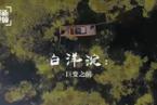 【微纪录】白洋淀:巨变之前