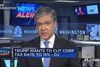美媒:特朗普拟下调企业税率至15%