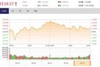 今日收盘:消费股领涨 沪指反弹乏力微涨