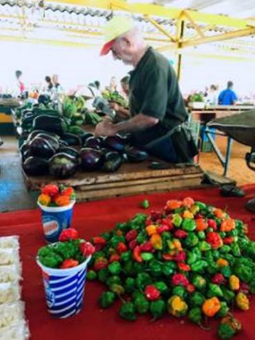 △ 红红绿绿的辣椒。古巴人大多不喜欢吃辣,所以辣椒在市场是稀罕物