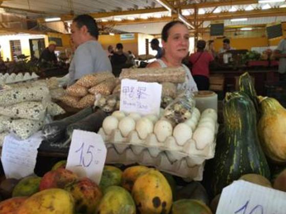 △ 随着在古巴的中国人增多,商贩也投其所好地准备了部分中式食材并写上汉字,甚至很多商贩会说食材的中文发音