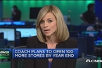 Coach或收购Jimmy Choo 股价上涨11%