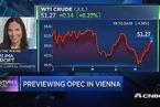 分析:市场已预期OPEC将延长减产9个月