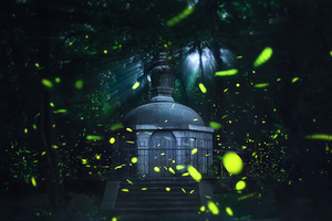 Taobao's Firefly Sales Go Dark as Company Bows to Environmentalists
