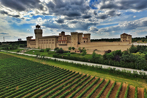 Changyu Cheers Chilean Winemakers With Spending Spree