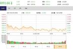 今日收盘:金融股领跌 深强沪弱走势分化