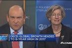 经合组织首席经济学家:预测2017全球增速为3.5%