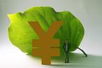 绿色债券:未来十年不容忽视