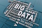 """陆铭:应警惕""""大数据让计划成为可能""""滑向政府万能"""