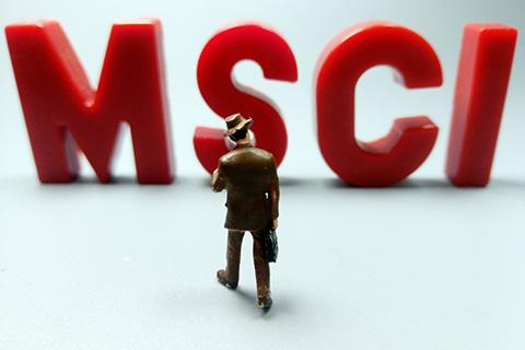 A股纳入MSCI宣布首日 境外资金都买了啥