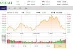 今日收盘:资金抱团白马、金融股 创业板跳水杀跌