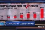 """中国""""吃货""""拯救美国龙虾产业"""