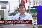 """美众议院议长:企业税降到20%""""非常现实"""""""
