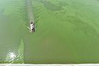 中央环保督查组:安徽以保护之名违规侵占巢湖