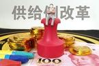 刘世锦:优先推进降成本的供给侧改革