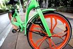 共享单车町町人去楼空 创始人曾涉非法集资
