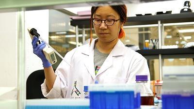美实验室用培养皿繁殖肉类 比传统肉类更干净环保