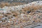 """长江口倾倒垃圾案提起公诉 2万吨""""海盐垃圾""""入长江"""