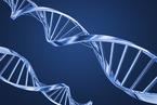 当基因测序遍地开花,当身世之谜大白天下,你准备好了吗?