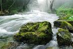 美学者提出开发天然水面蒸发能,功率密度可达风电三倍