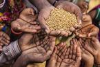 """吃饱仍是大问题 近半数发展中国家饥饿水平被评级为""""严重""""""""警戒"""""""