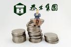 泰禾集团激进并购 前三季度净负债逾400%