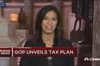 美国共和党公开税改计划