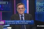 分析人士:看好印度股票和中国债券