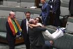 澳大利亚修法承认同性婚姻权 公投中有六成民意赞成