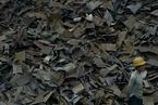 前10月钢铁行业废钢应用量同比大增58%
