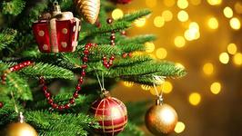 """美国圣诞树供应面临短缺 源自金融危机""""后遗症"""""""