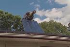 美家用太阳能市场缩水 主因竟是特斯拉