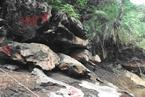 环保组织质疑云南水电站将部分淹没自然保护区