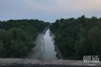 东莞填海项目后续:红树林湿地公园将扩至千亩