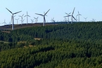 统计局首次发布绿色发展指数 北京居首新疆垫底