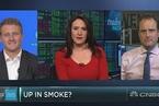 受美司法部打压 大麻类股票集体下跌