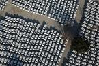 徐长明:合资品牌或降价推广新能源汽车