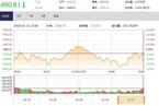 今日收盘:业绩黑天鹅加剧分化 逾百只个股跌停