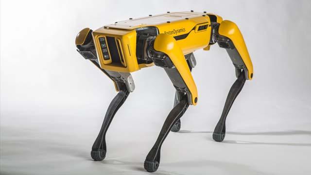 波士顿动力再放新招 机器狗可帮同类开门