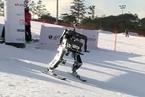 平昌冬奥会之外 机器人也来参加滑雪比赛