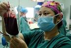 北京血荒续:血型短缺此起彼伏 优先保障急救
