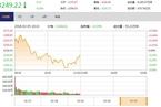 今日午盘:新经济概念股活跃 沪指冲高回落跌0.16%