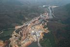 重伤中国最后一片热带雨林