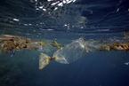 太平洋垃圾带吸聚近8万吨塑料  面积达160万平方公里