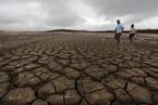 报告:土地退化正将地球推向第六次物种大灭绝