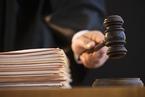 首例证券支持诉讼案获评2017年十大公益案件