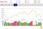今日午盘:消费股强势回升 沪指反弹上涨0.80%