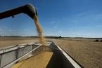 美国大豆农民:要合作不要互相伤害