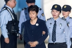 特稿|囚徒朴槿惠:从个人悲剧到国家悲剧
