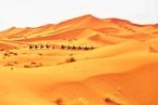 研究:撒哈拉沙漠百年扩张10%  全球变暖为主因